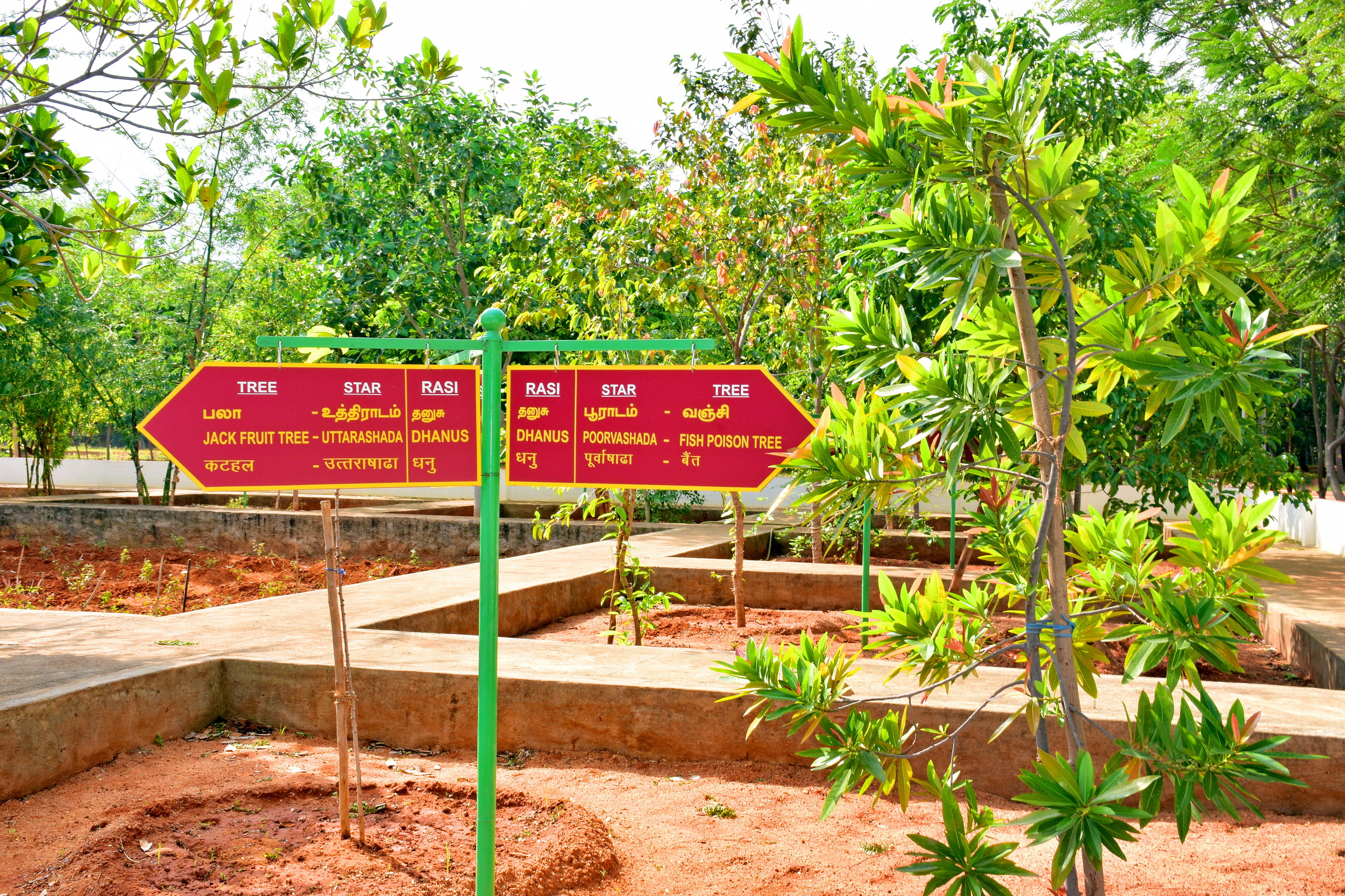 Nakshatra Vanam (Star Forest)
